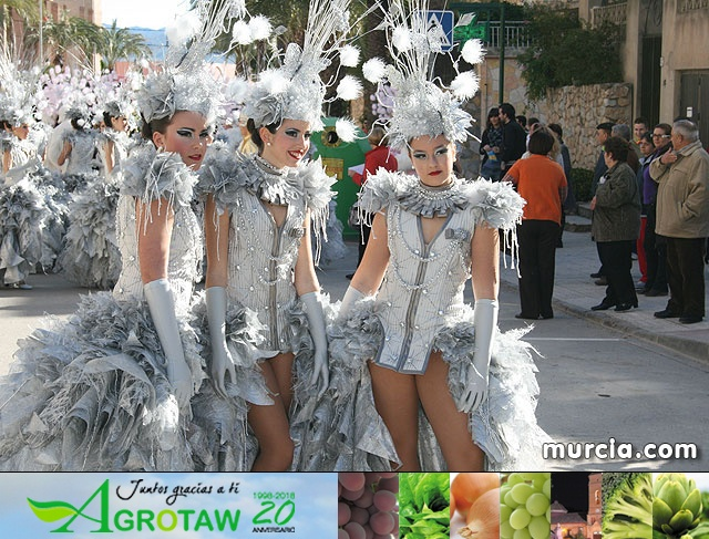 Carnaval Totana 2010 - Reportaje I - 8