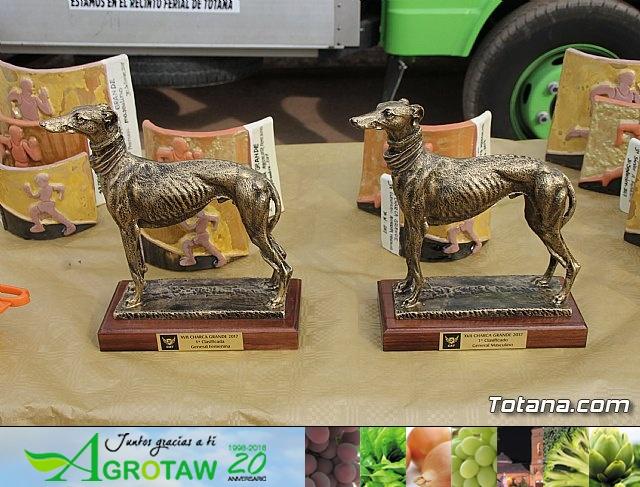 Charca Grande - Gran Premio Panzamelba 2017 - 5