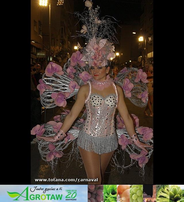 Totana estuvo presente en los carnavales de Águilas y Alhama - 18