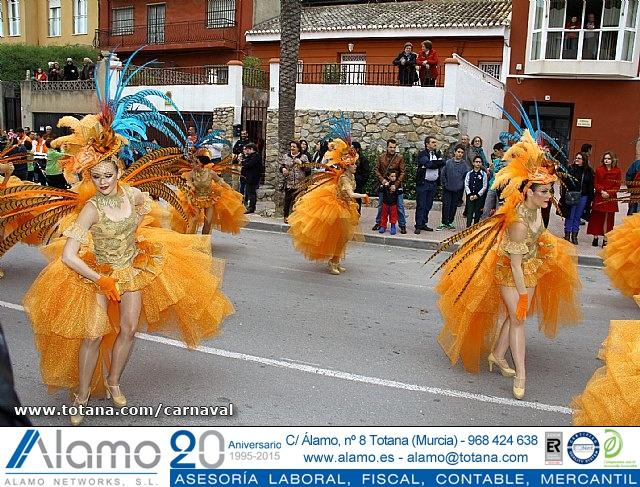 Desfile de Carnaval. Totana 2014 - 3