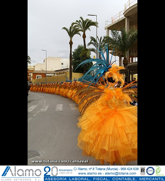 Desfile de Carnaval. Totana 2014 - 9